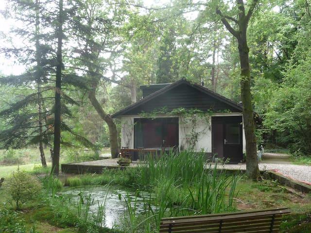 Sfeervol huis midden in de natuur - Emst - Chalet