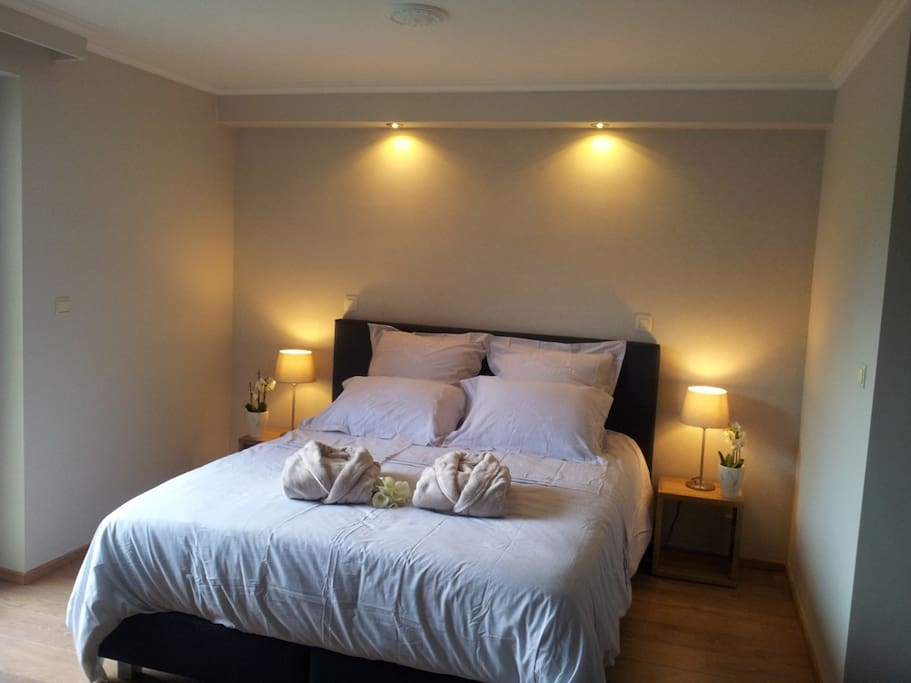 bed and breakfast atomium brussels expo chambres d 39 h tes louer bruxelles bruxelles belgique. Black Bedroom Furniture Sets. Home Design Ideas