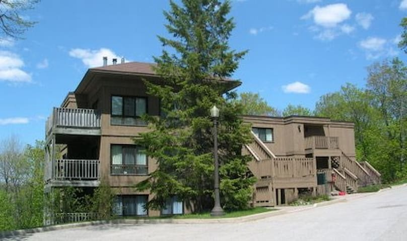 2 Bdrm Suite on Deerhurst Drive - Huntsville - Apartment