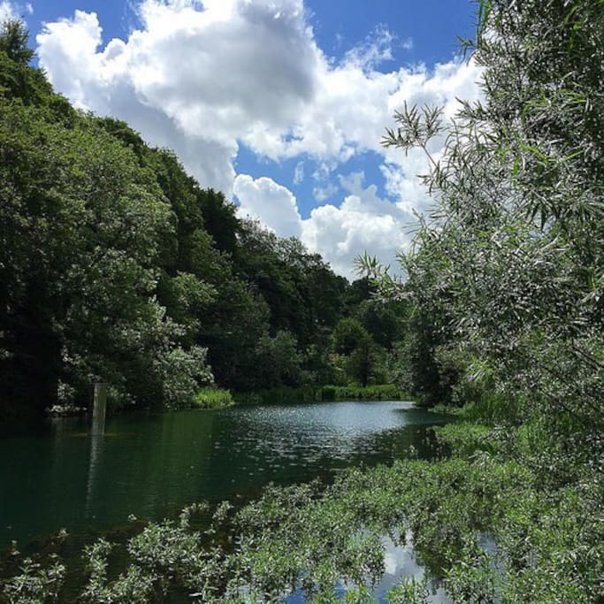 Ruskin lake