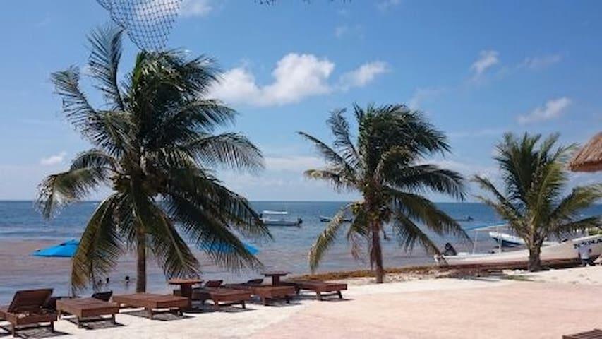 RM Regatta Suite 2, club de playa y discoteca...