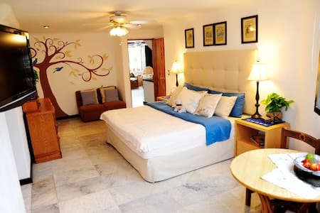 Great B&B in the Cancun Hotel Zone! - Cancún - Bed & Breakfast
