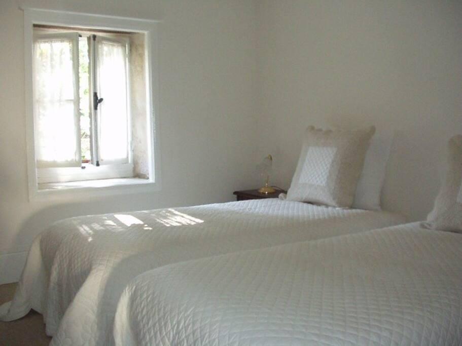 La Chambre Twin au RDC : 2 lits simples (90cm) pouvant être séparés ou réunis. Avec salle d'eau et WC dédiés.