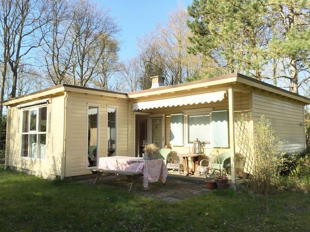 Heerlijk vakantie huisje in Zeeland - Burgh-Haamstede - House