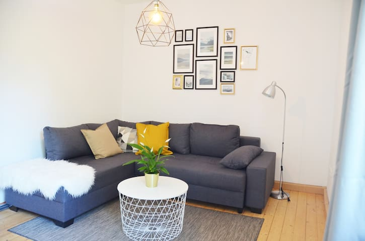 Modern & Cozy Apartment w. Netflix close to Campus