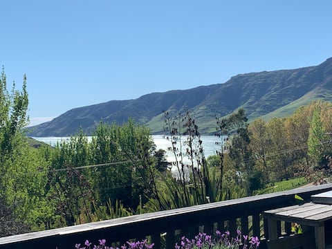 Kereru Haven: Pigeon Bay home with a view