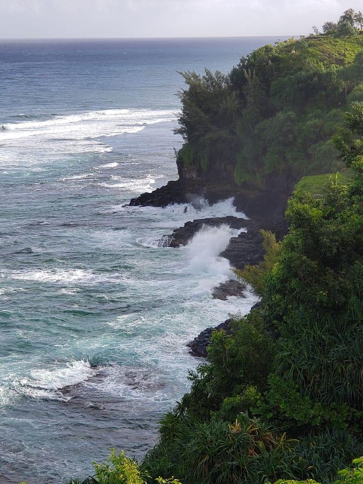 Mesmerizing ocean view corner walkout unit *wifi*