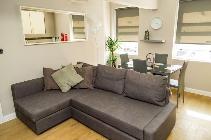 Brand new modern bright Bold Street City apartment
