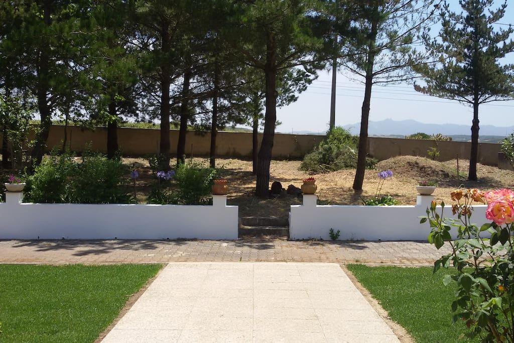 View from the front door to Serra de Sintra