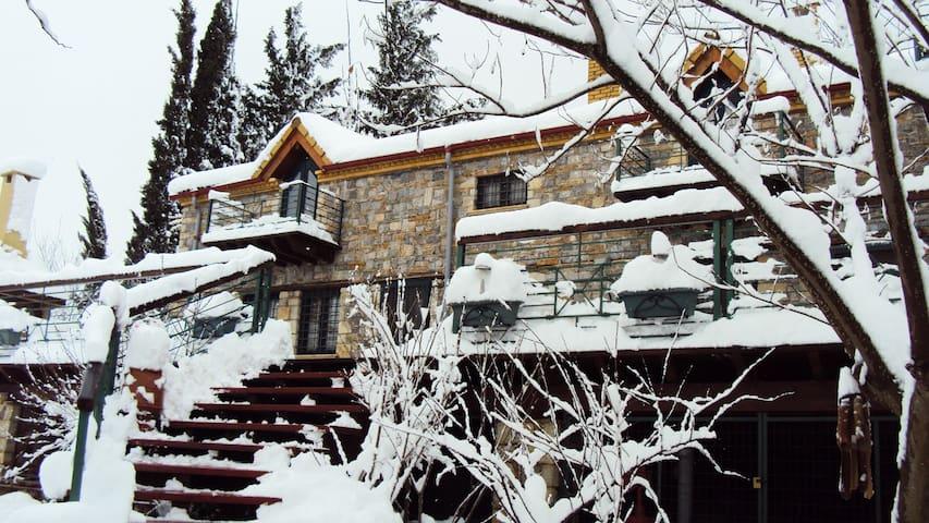 Villa Iliana