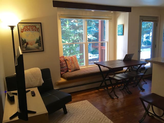 Sunny, Cozy, Pet-Friendly Aspen Apt - Aspen - Wohnung