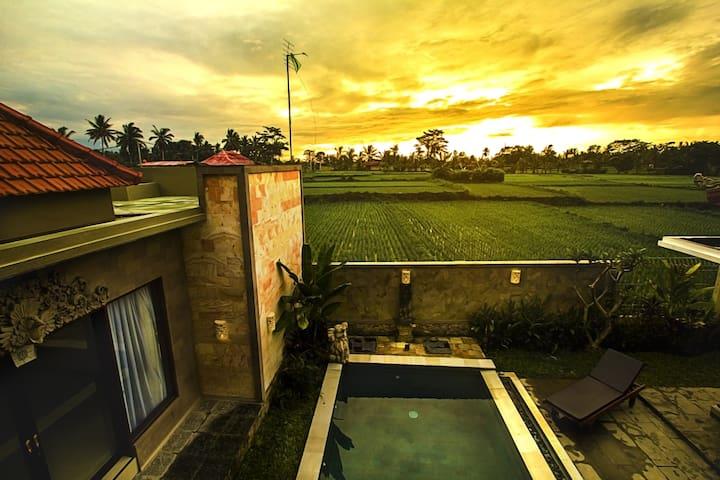 2 BR Villa ~Pvt Pool ~ Rice Field ~ Ubud Lestari - Ubud - Villa