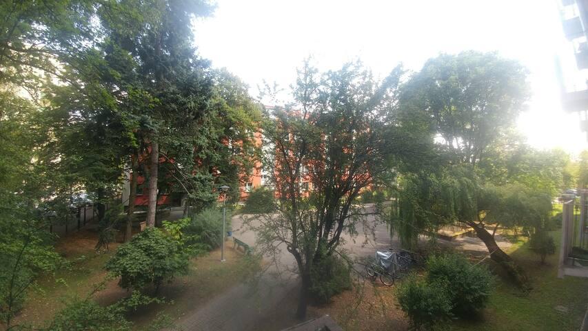 Warszawa. Przytulne studio na bliskim Żoliborzu