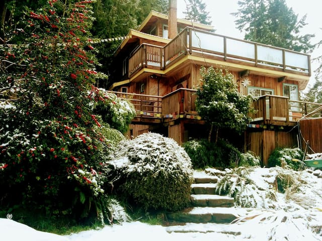 Cliff Pagoda group retreat winter special - Galiano Island - House