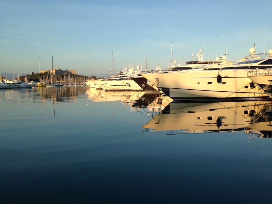 Port Vauban - port de plaisance d'Antibes et son fort carré