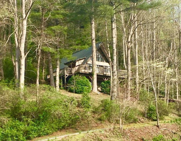 Ellijay Cottage as seen from the street.