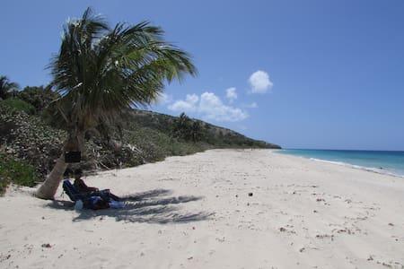 1 mi frm Flamenco Beach, rustic apt.  private ent. - Culebra