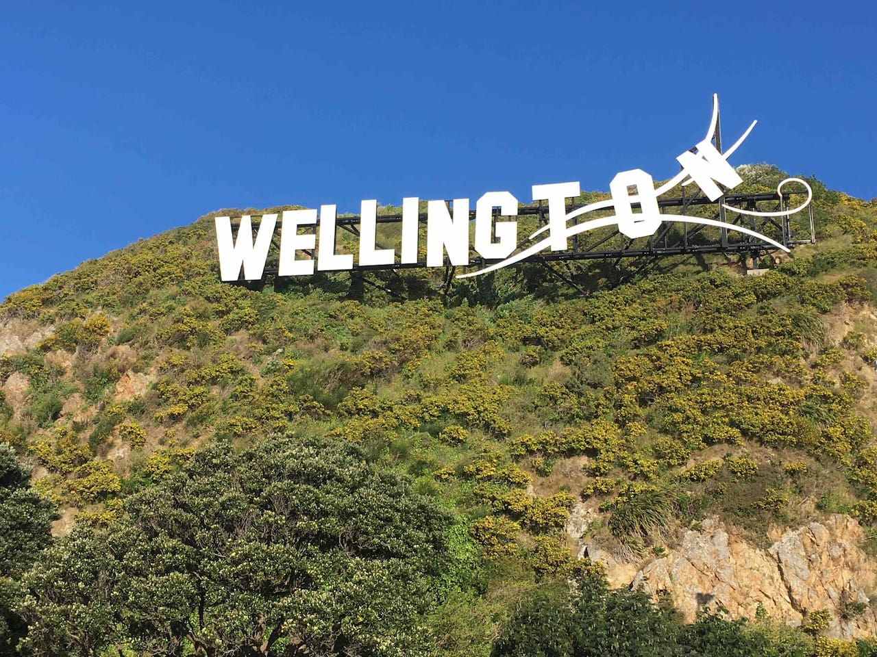 """Just ten minutes from the famous """"Welly-wood"""" sign on the hill, close to cafes, bars and restaurants and some of the most stunning views in Wellington!"""