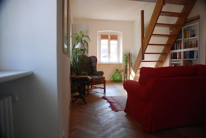 Cozy flat in the heart of Trieste