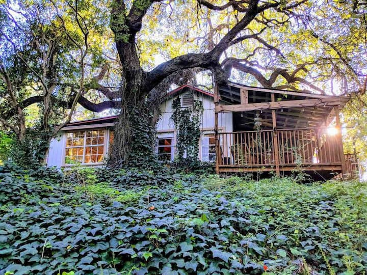 Cibolo Creek Cabin