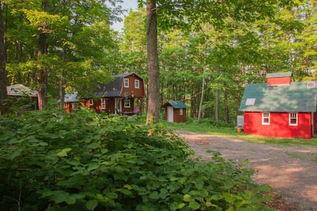 Cabane de ressourcement en forêt
