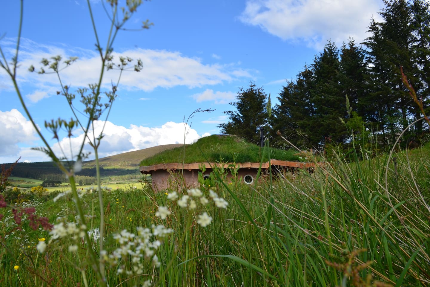 Hobbit Hideaway, a natural home nestled in a wee slice of Scottish paradise!
