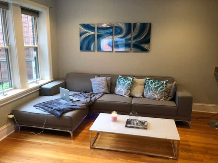 Great condo in Edgewater/Andersonville