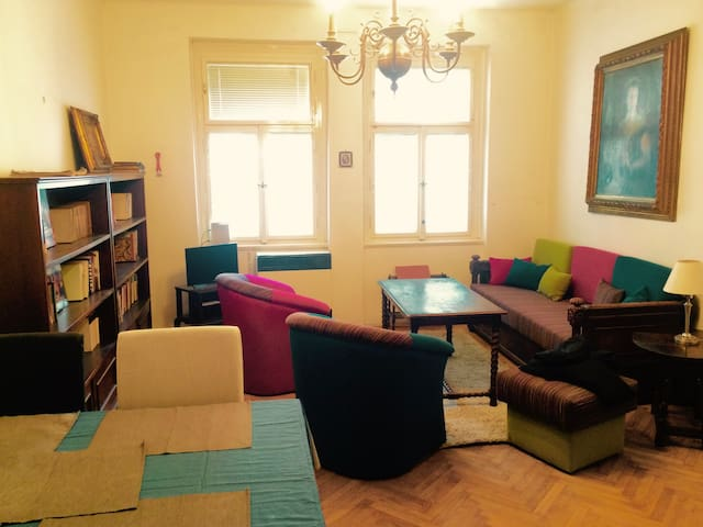 Apartment in Prague 2 - Vinohrady