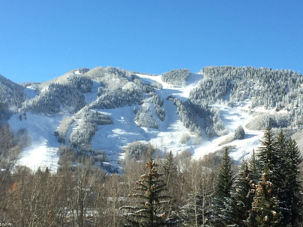 Fabulous views of Ajax (Aspen Mt.) from living room, terrace and master bedroom