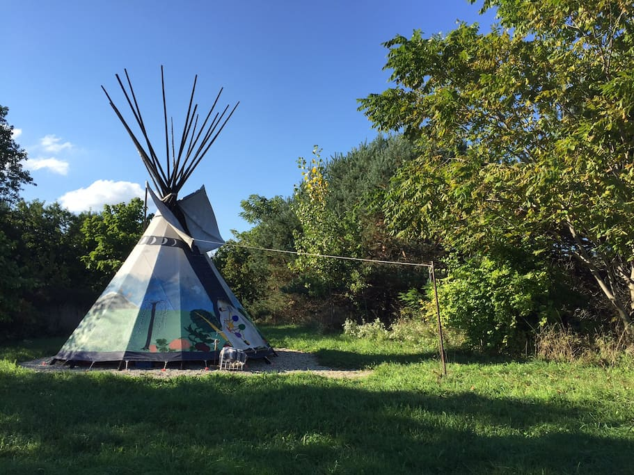 This side view of the tipi shows how it sits sheltered within a woodland area.
