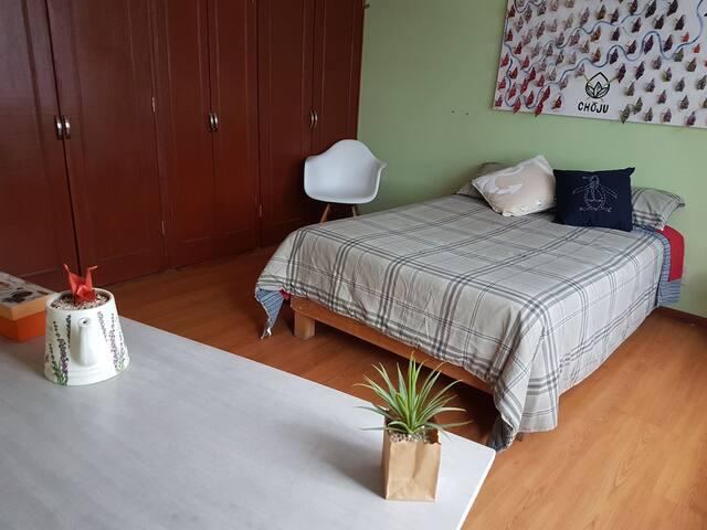 Cómoda Habitación (ambiente acogedor)