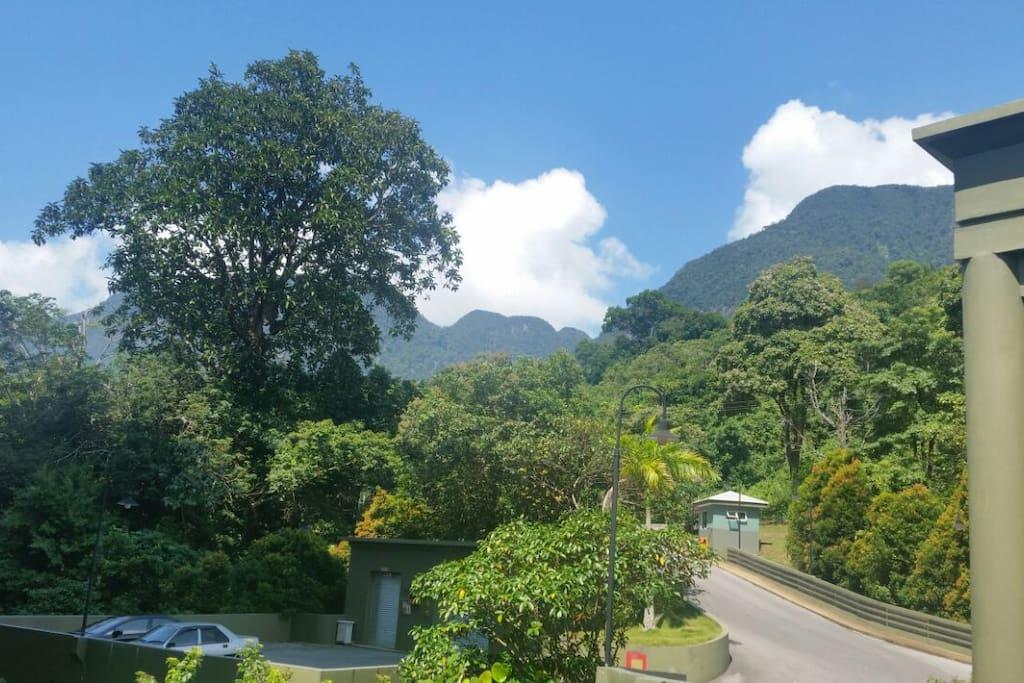 Santubong Hills are just behind