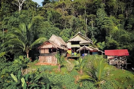 Local´s house in Natural Reserve, El Amargal-Nuquí