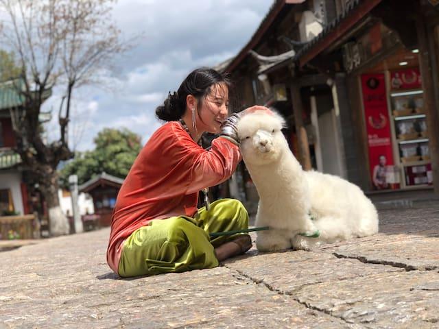 炒鸡萌宠羊驼苏西-免费定制旅行-有空调电热毯-可免费做饭洗衣-浪漫情侣圆床
