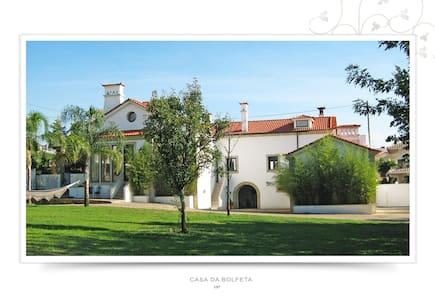 PARADISE - Oliveira de Azeméis - Villa