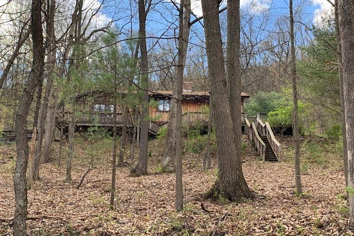 Mountainside Cabin near Penn State University