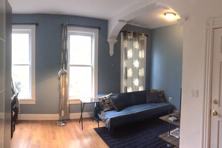 Sunny One Bedroom Apartment in Crown Heights - Brooklyn - Apartment