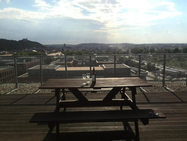 Two-bedroom apartment with great view for 3