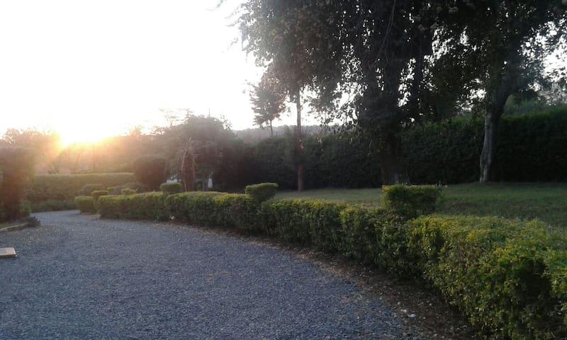 Quiet serene place! - Nairobi, Nairobi County, Kenya