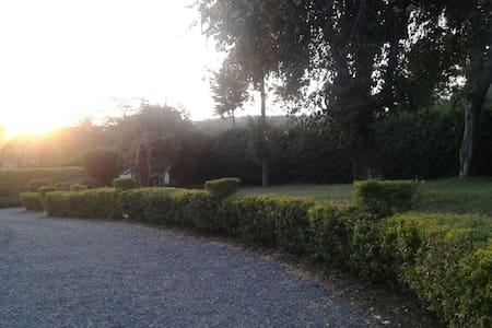 Quiet serene place! - Nairobi, Nairobi County, Kenya - Hus