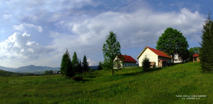 Casa Ana in Bucovina's Mountains Vatra Dornei
