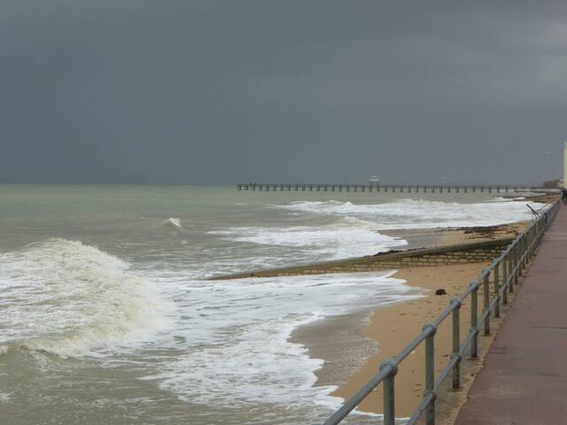 Charmant 2 pièces à 20 mètres de la plage