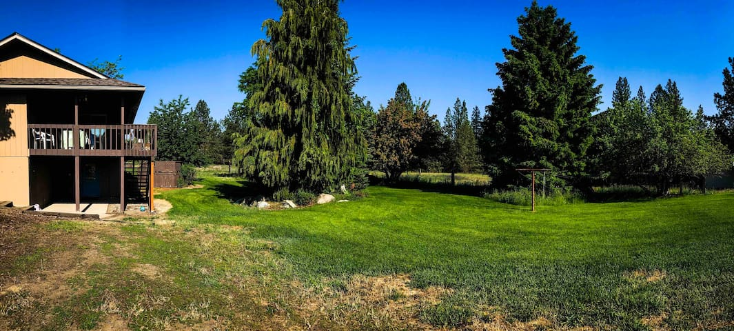 Beautiful private backyard, sitting on 5 acres.  Enjoy the peaceful setting, lots of beautiful wildlife,  local birds, deer, raccoon and wild turkeys.  Occasionally the local moose walk through with their babies!