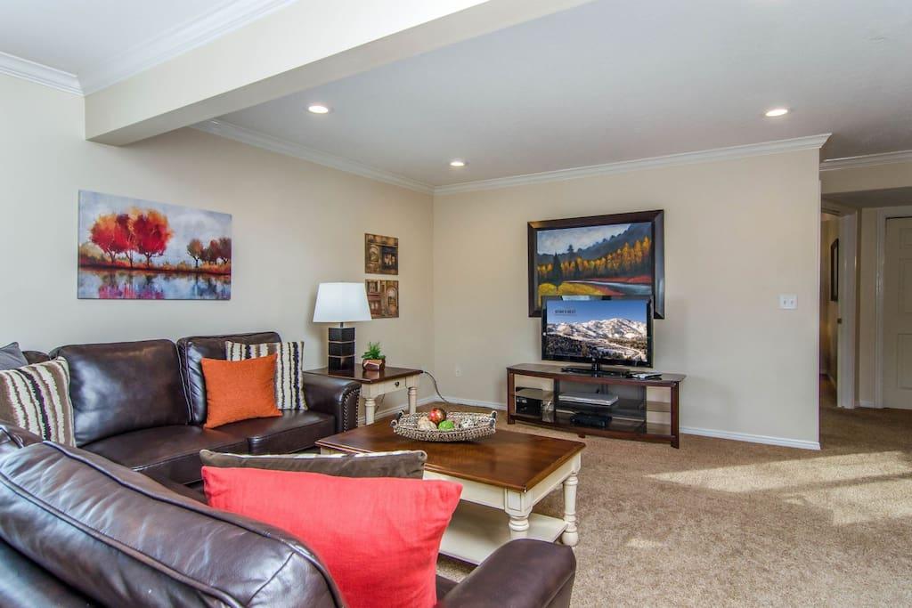 Living room on lower level