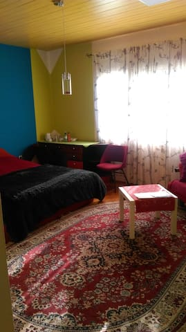 family friendly, pet friendly, - Ljubljana - Rumah