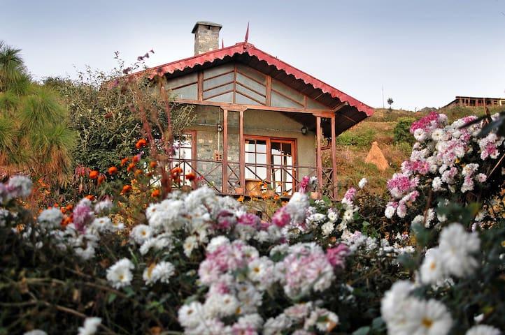 Marten Cottage, Pangot