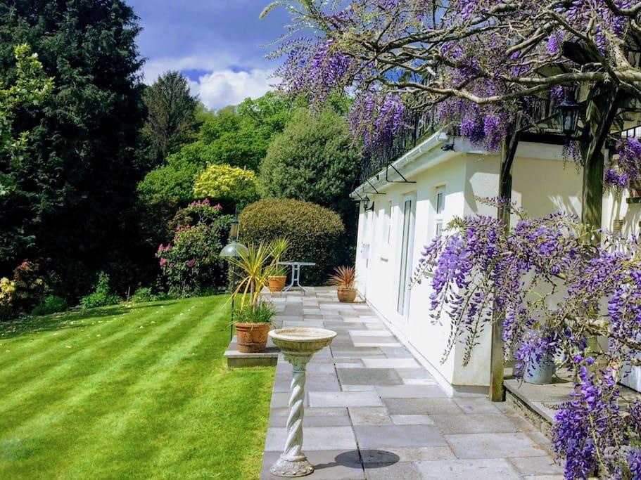 Garden apartment and terrace