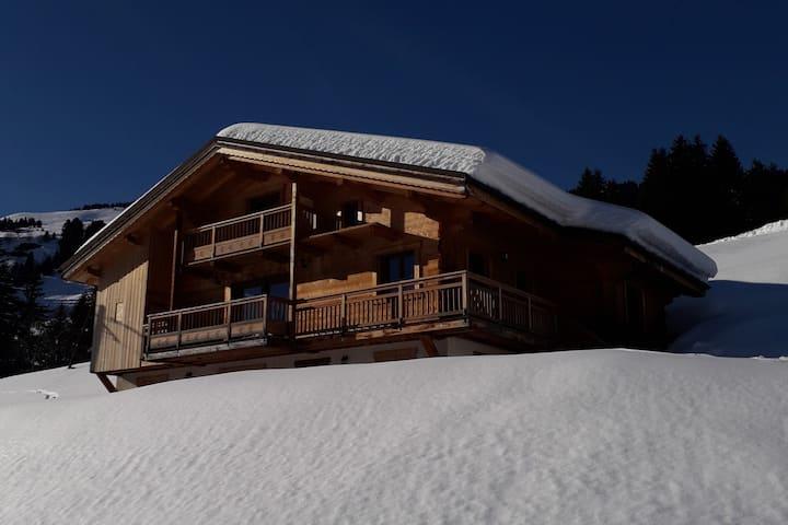 Chalet typique savoyard avec vue sur le Mont Blanc