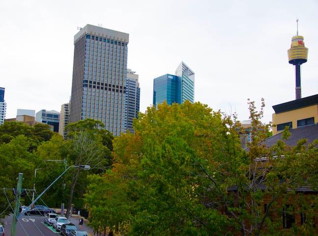In the Heart of City - Sydney Escape & Explore