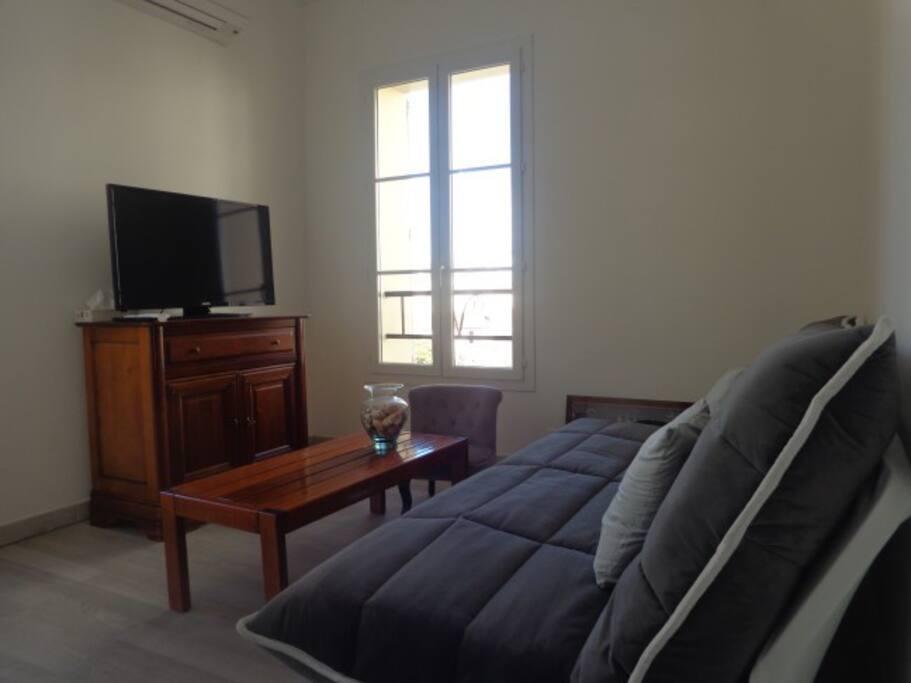 Salon  living avec convertible  écran LCD  internet et accès terrasse.